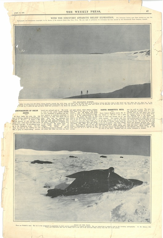 Newspaper cutting showing different images of the Antarctic expedition 1901-4 DUNIH 2016.30.45.9