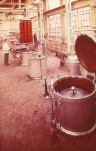 Image of Man using dyeing vats at Tay Carpet Works DUNIH 2006.1.44.7