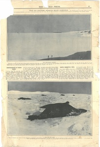 Newspaper cutting showing different images of the Antarctic expedition 1901-4 DUNIH 2016.30.45.10