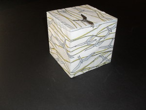 Image of Cube covered in paper with a sea bird and ropes design DUNIH 2011.1.79