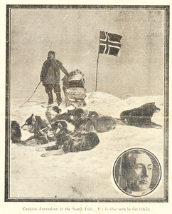 Image of Newspaper clippings relating to Terra Nova Expedition DUNIH 278.18